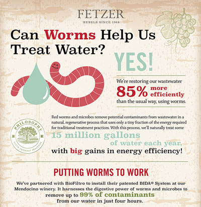 thumbnail of Fetzer's Worm's help save water Infographic.